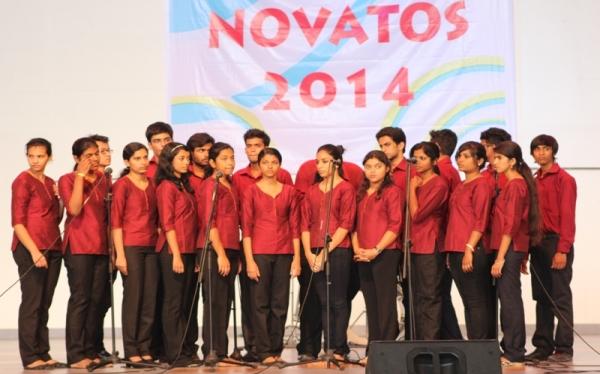 Novatos 2014